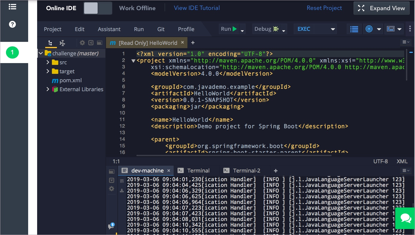Advantages of the HackerRank Projects testing environment